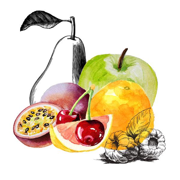 assortiment fruits