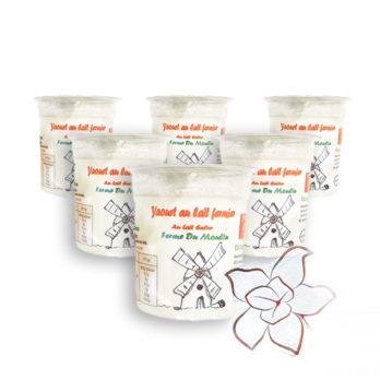 Pack 6 yaourts au lait entier – VANILLE